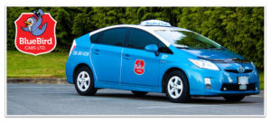 Bluebird Cabs Ltd. Book Online Banner