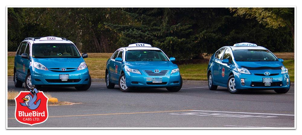 Contact BlueBird Cabs