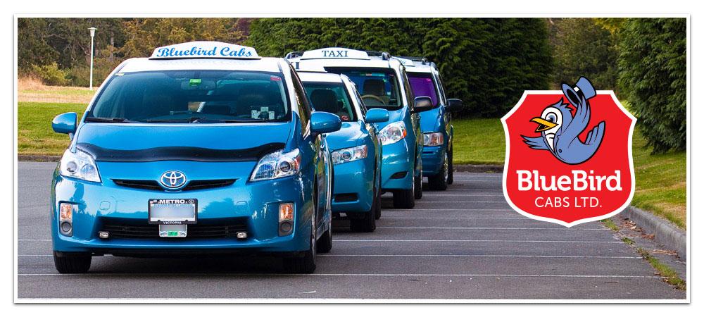 BlueBird Cabs Fleet