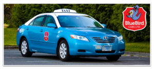 BlueBird Cabs Rates